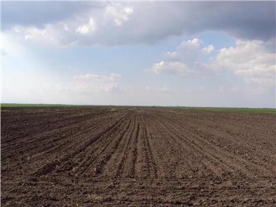 30 de hectare la 4500 de euro/ ha